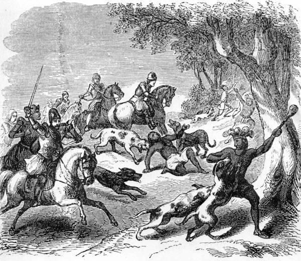 «Индейцы питали ужас перед этими псами…»