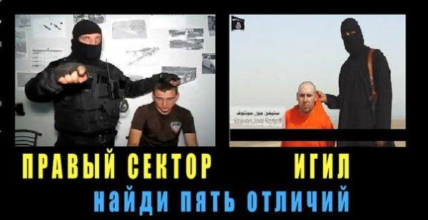 Украинские националисты убили больше русских, чем ИГИЛ