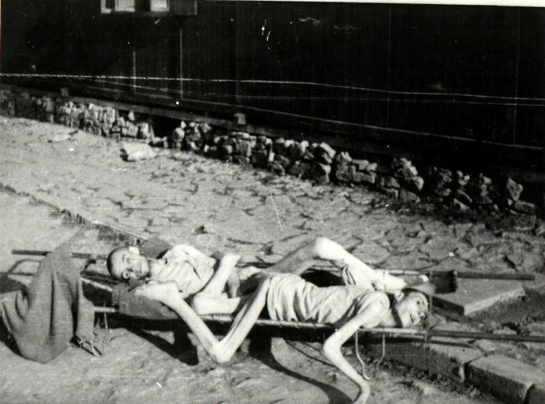 Жуткие фото замученных людей в концлагере Освенцим (Аушвиц)