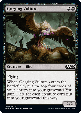 m20-102-gorging-vulture