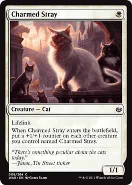 war-008-charmed-stray