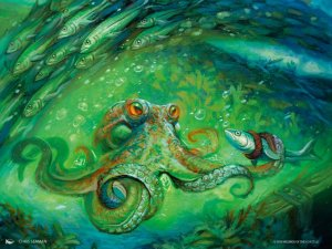 Sea-Dasher Octopus Art by Chris Seaman