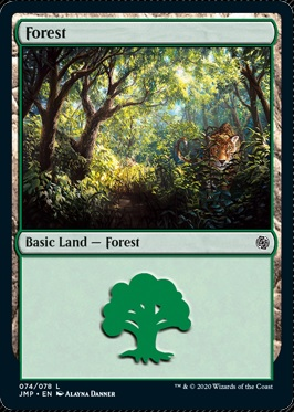 Cats Forest