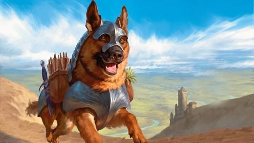 m21_dog_token