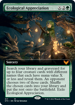 STX 317 Ecological Appreciation Extended Art