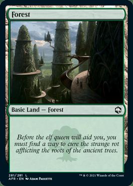 AFR 281 Forest Main