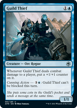 AFR 061 Guild Thief Main