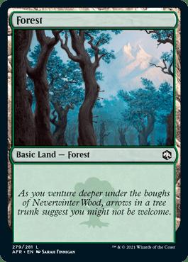 AFR 279 Forest Main