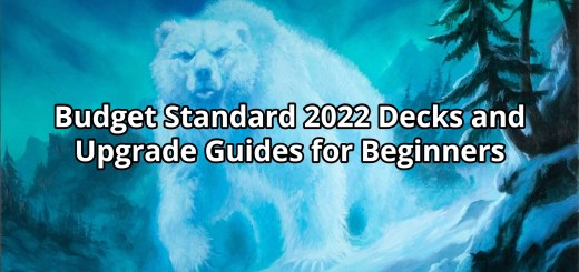 Budget Standard 2022 Decks and Upgrade Guides for Beginners