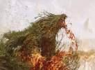 znr-221-brushfire-elemental