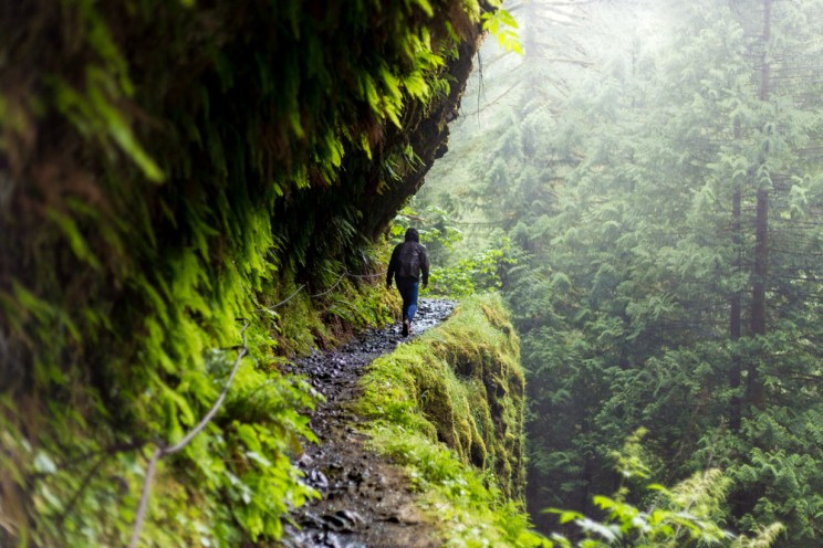 Eagle Creek Trail Hike To Tunnel Falls