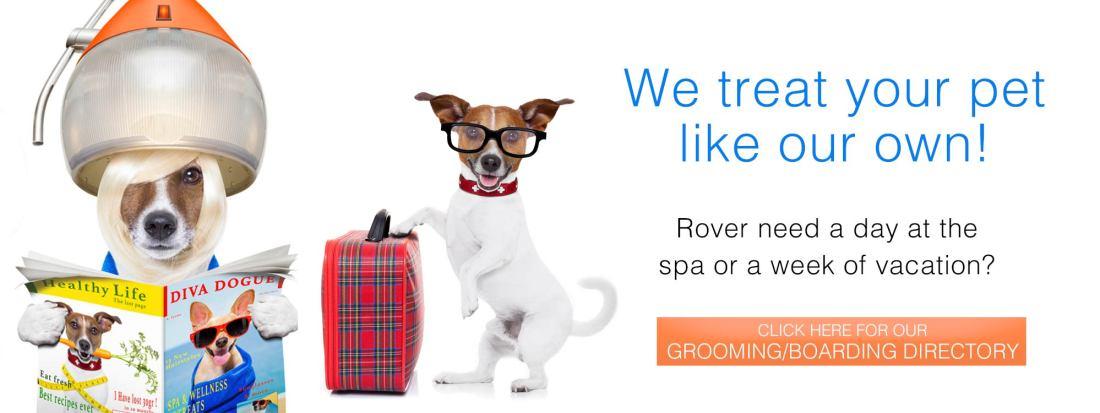 Grooming/Boarding Directory slide