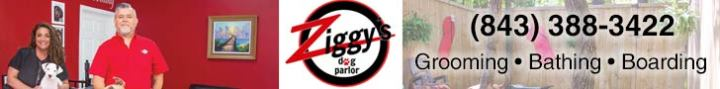 Ziggy's Dog Parlor 728x90