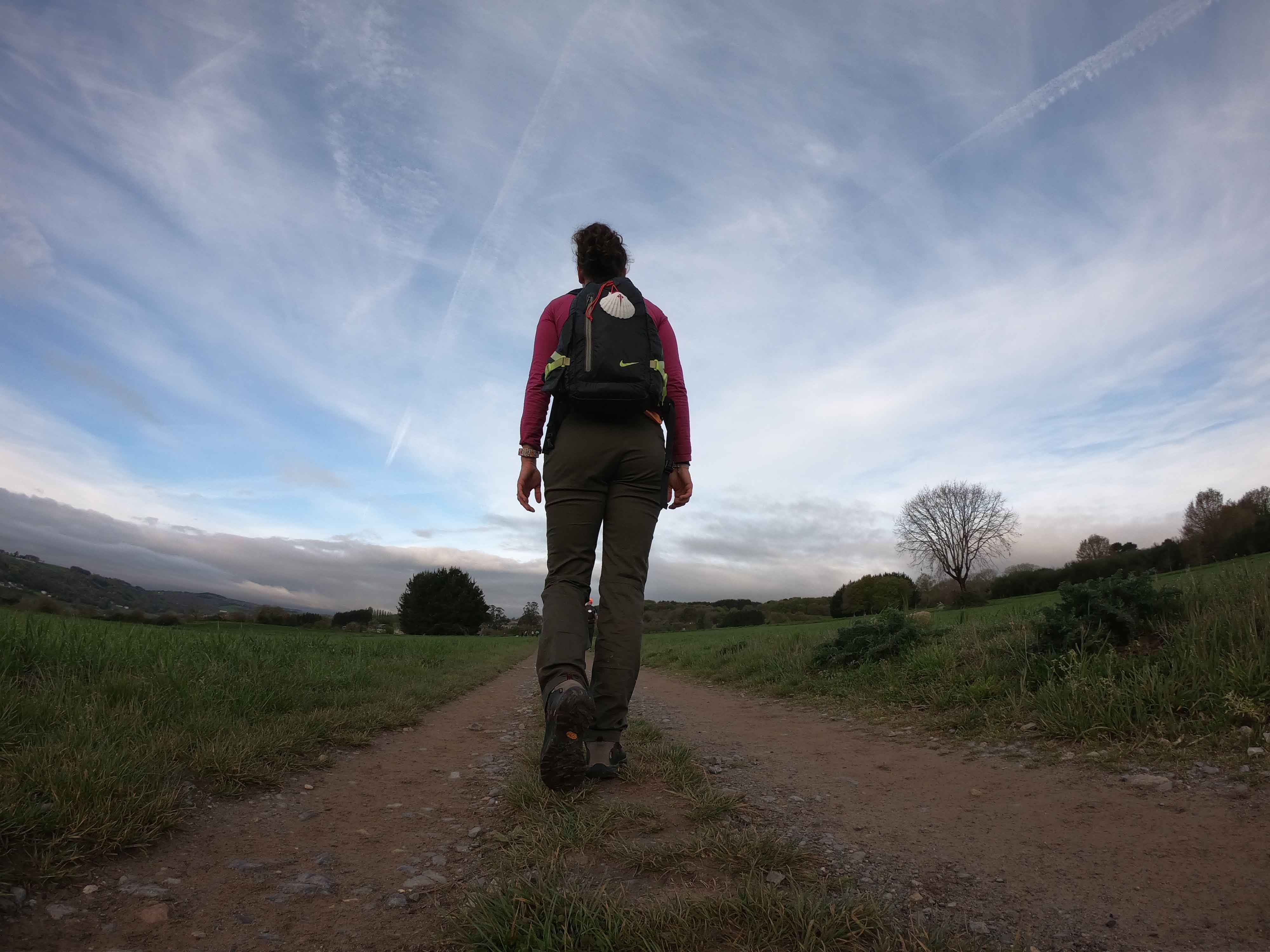 Camino de Santiago sarriá