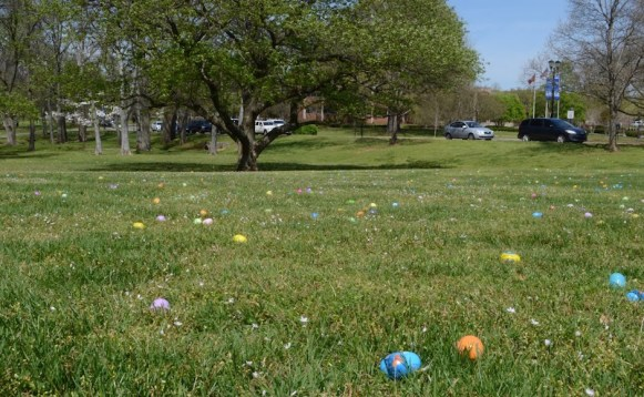 Eggs filled with candy scattered across President McPhee's lawn. (Sidelines/Robin Duff)
