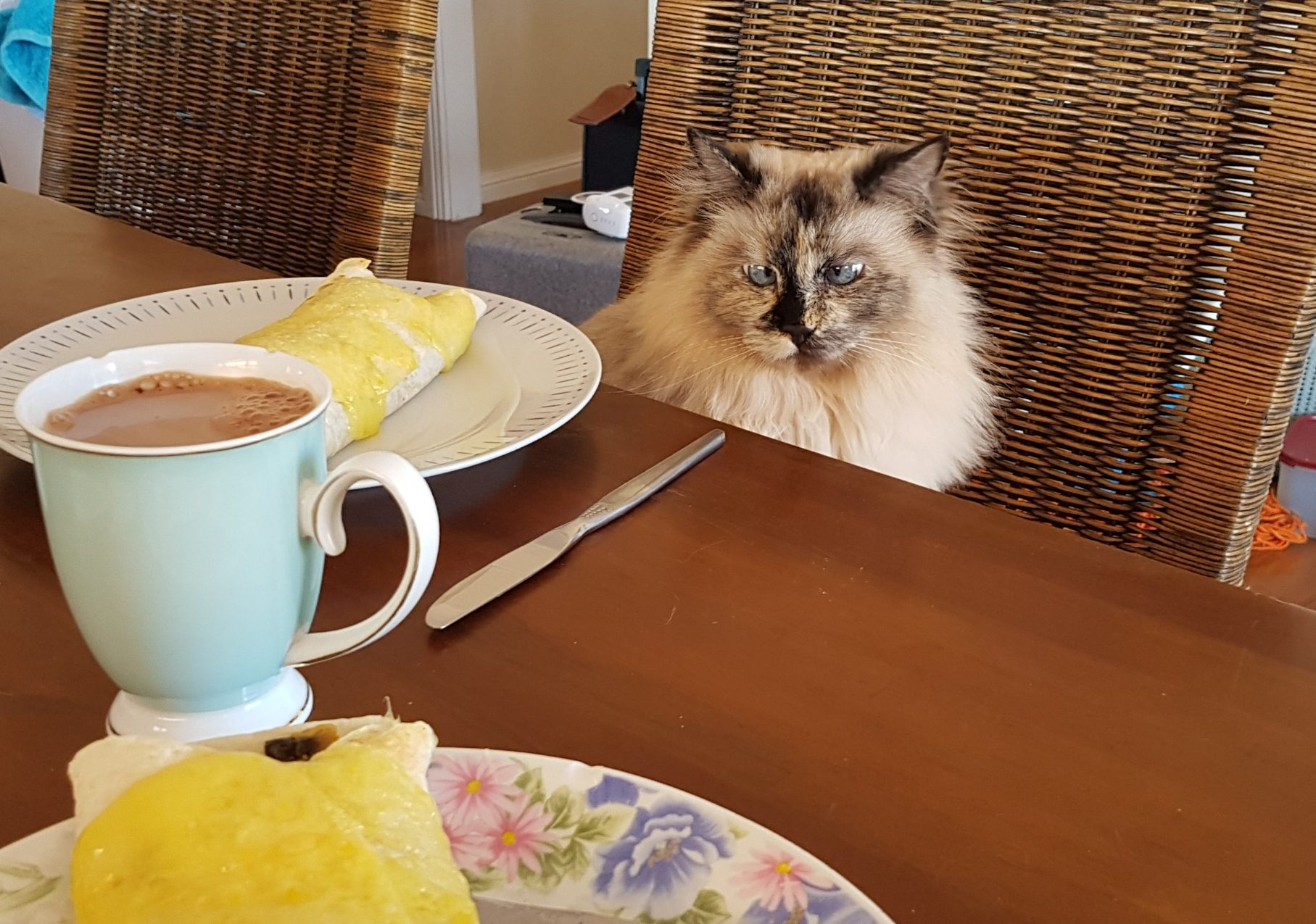 breakfast with lola