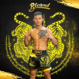 Muay Thai Shorts Gold Tiger