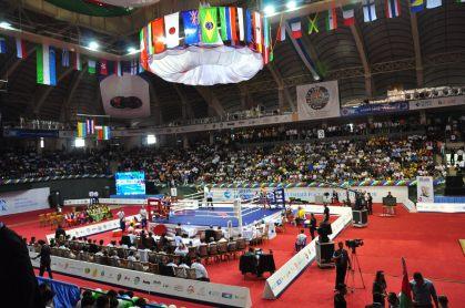 WC2011_finalDay_0020