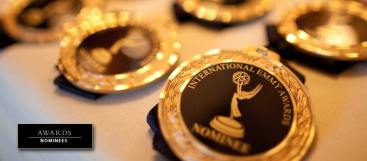 Awards nominee medals