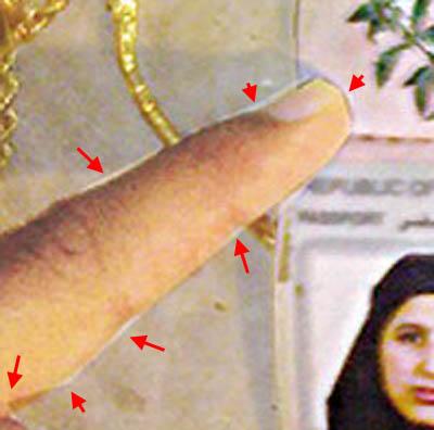 fingerdetailpassportfakeosamawife.jpg