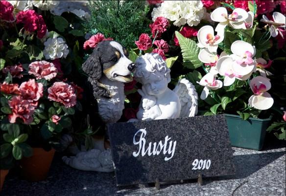 A trio of odd pals commemorate Rusty; Steve Sampson