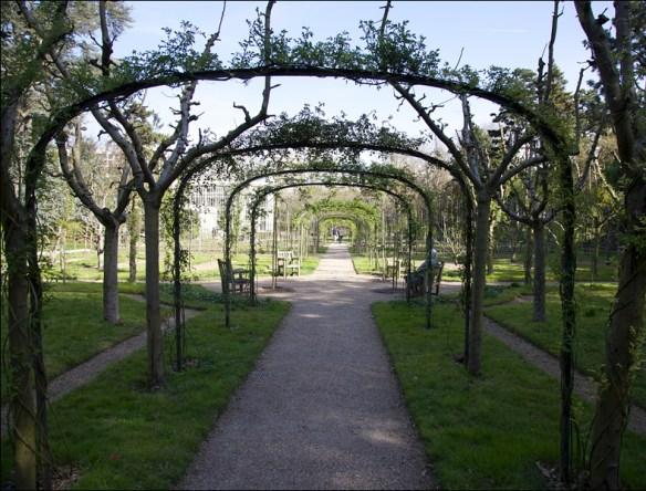Albert Kahn garden, March; pic: Steve Sampson