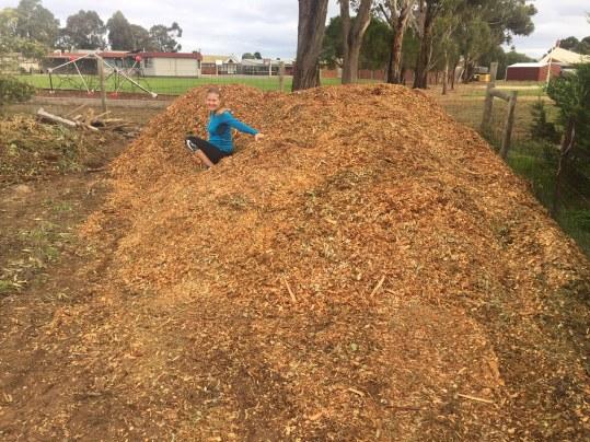 Dreamland mulch