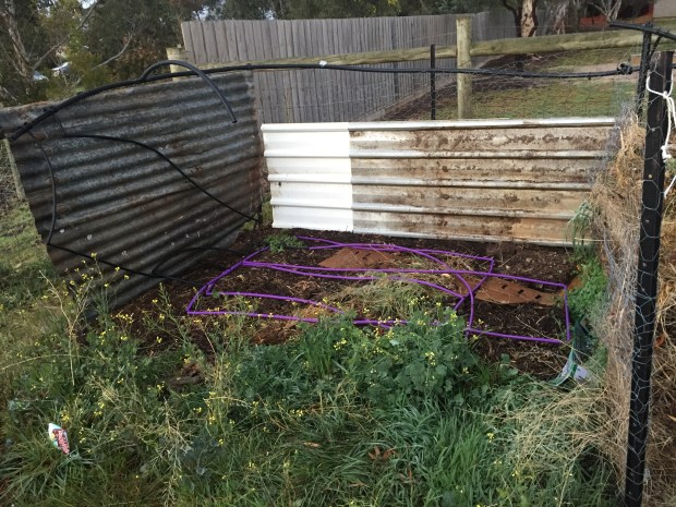 Compost - new heap