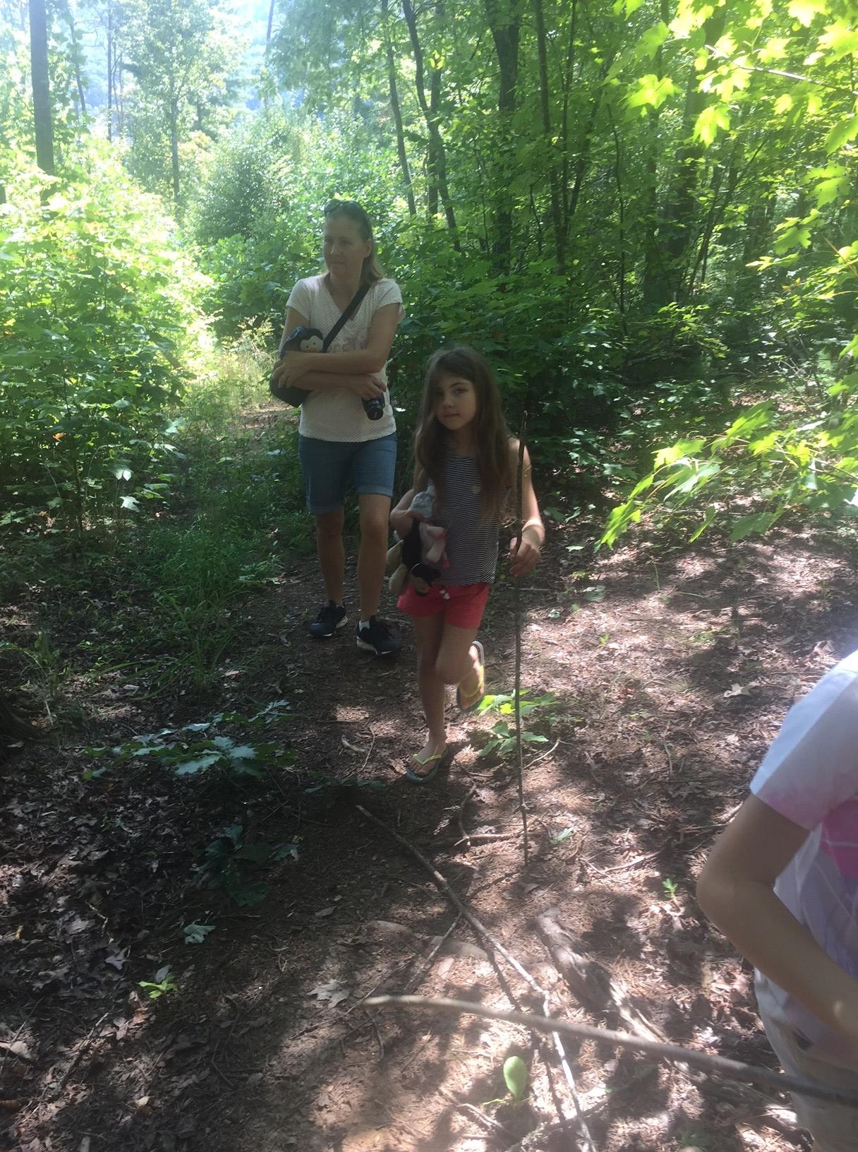 Frannys forest walk