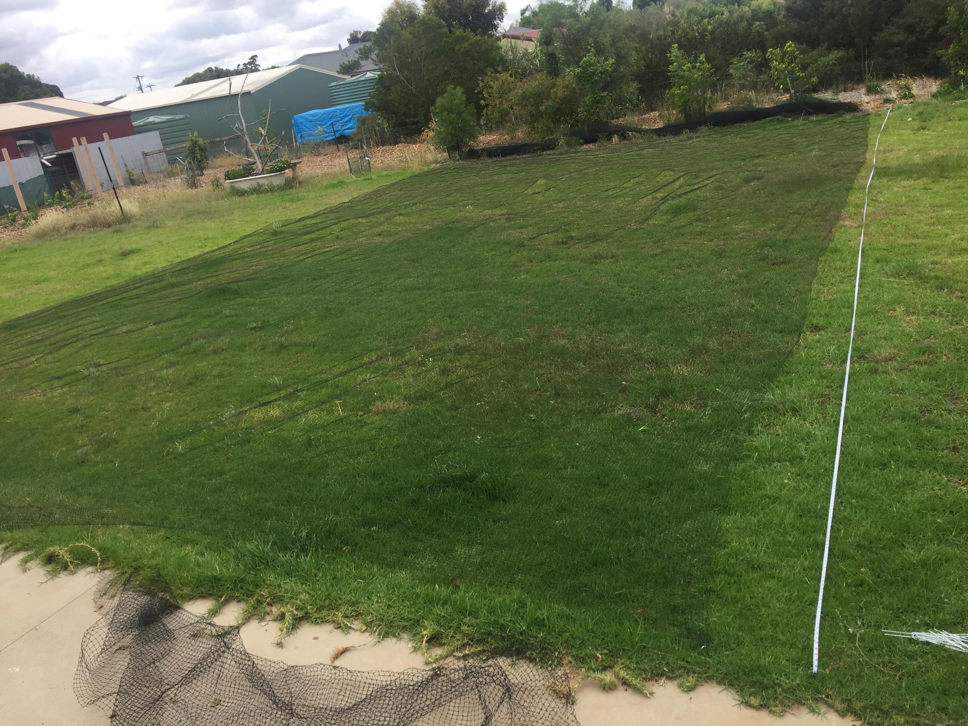 Net – footbal field