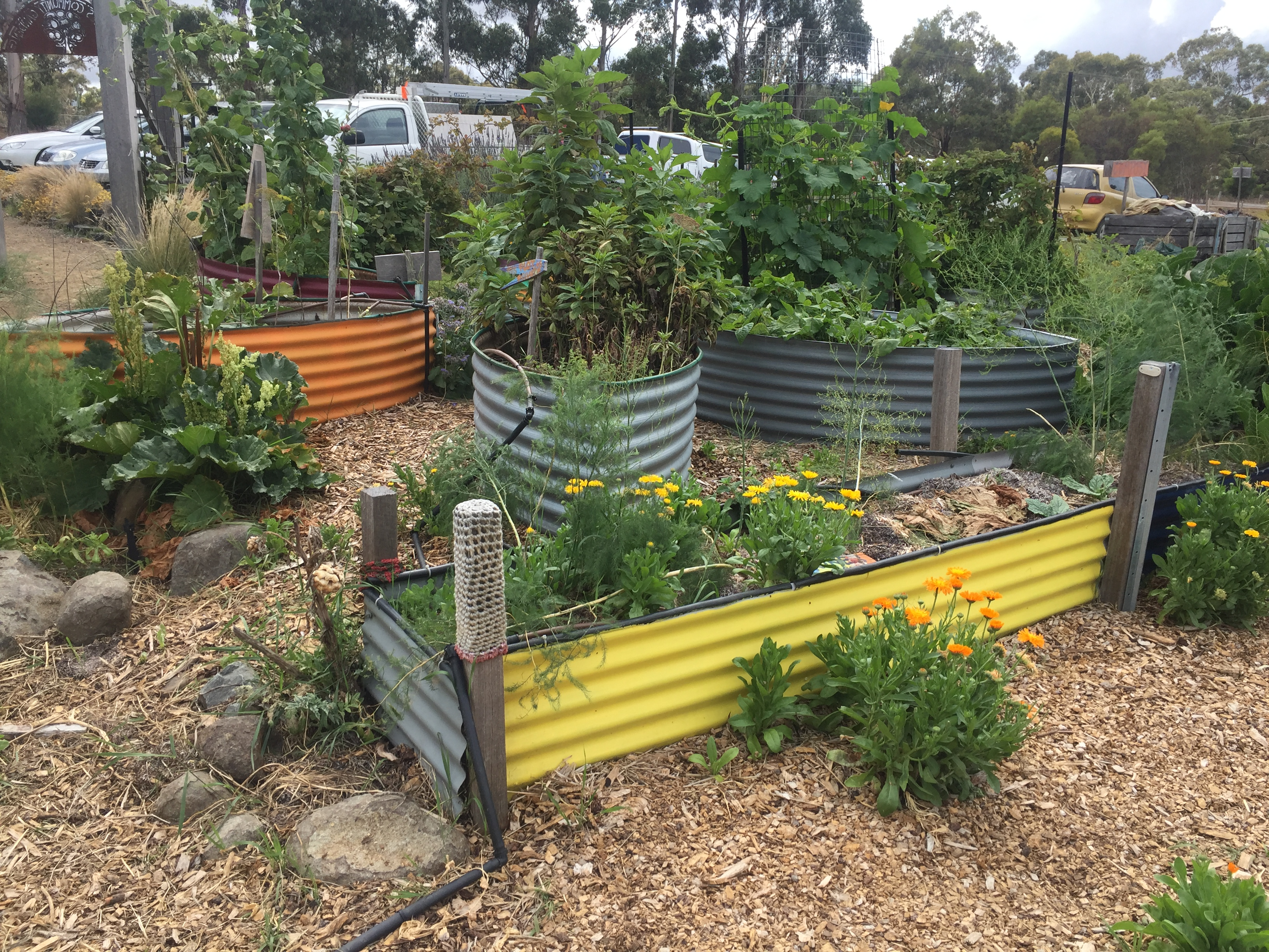 PDC community garden beds