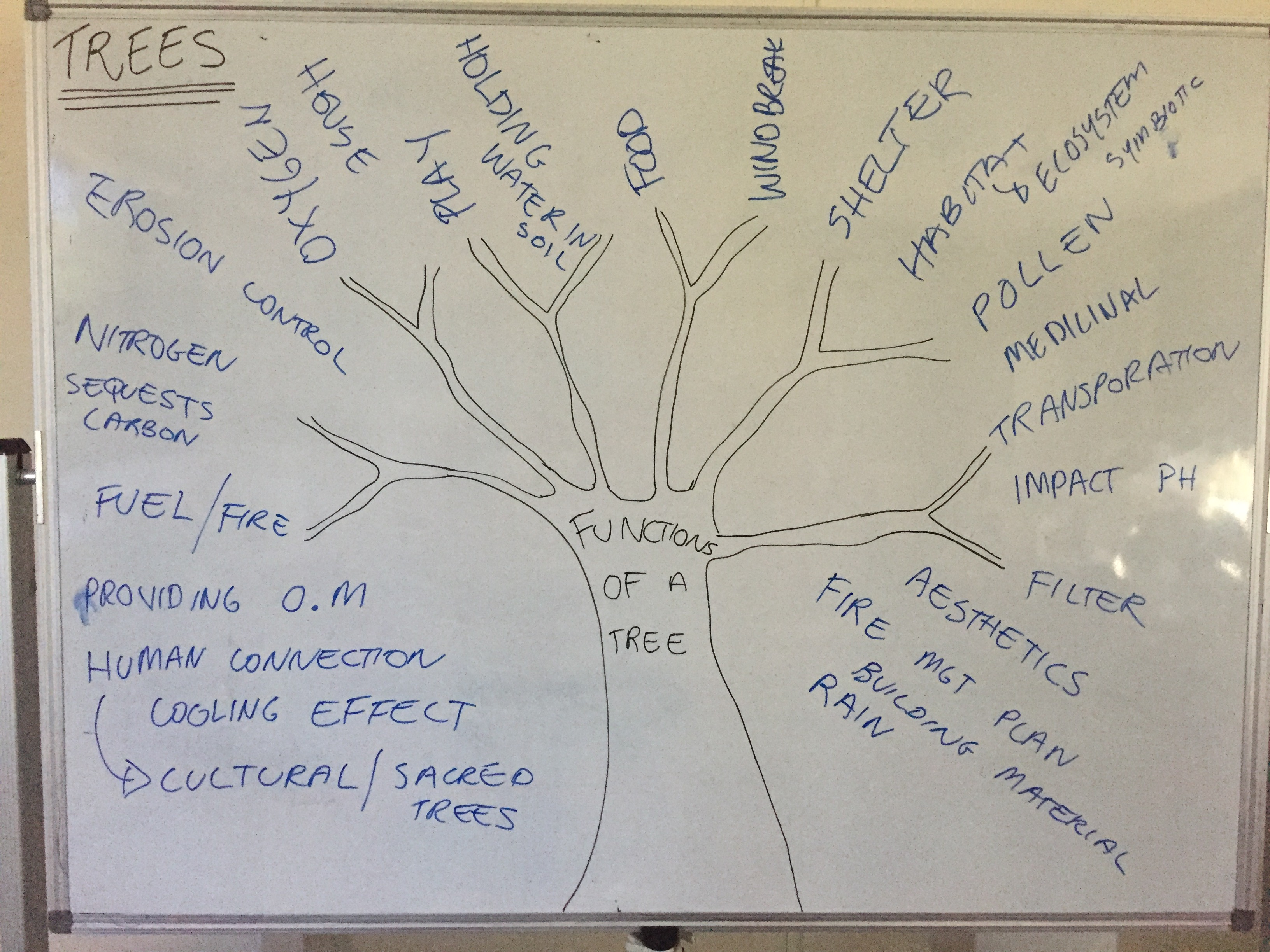 PDC functions of a tree