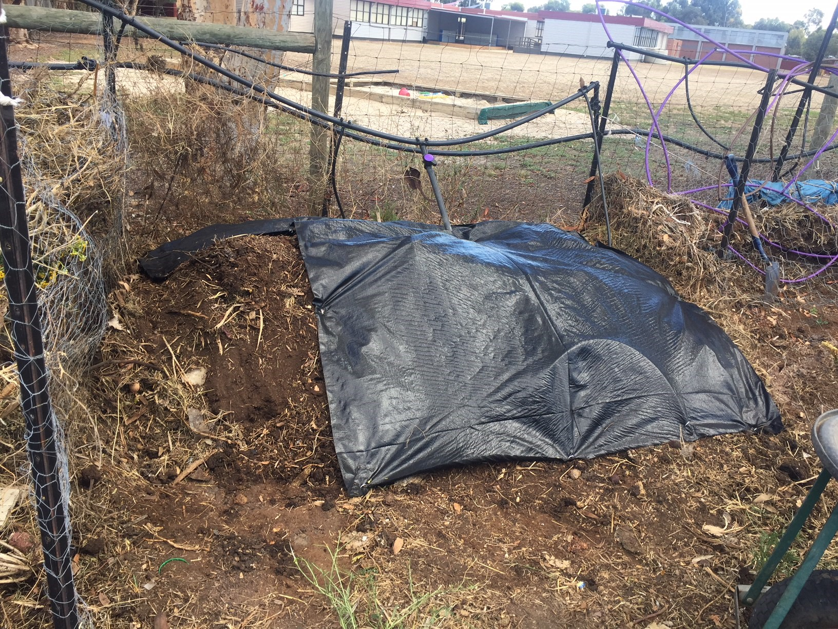 Compost – covered