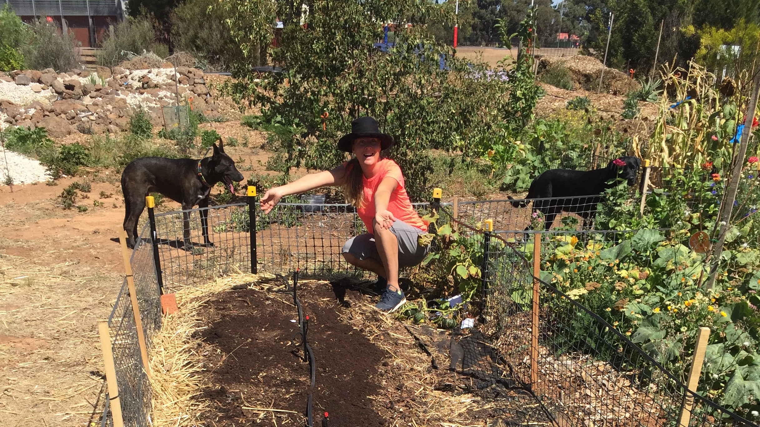 Nodig – Patricia planting