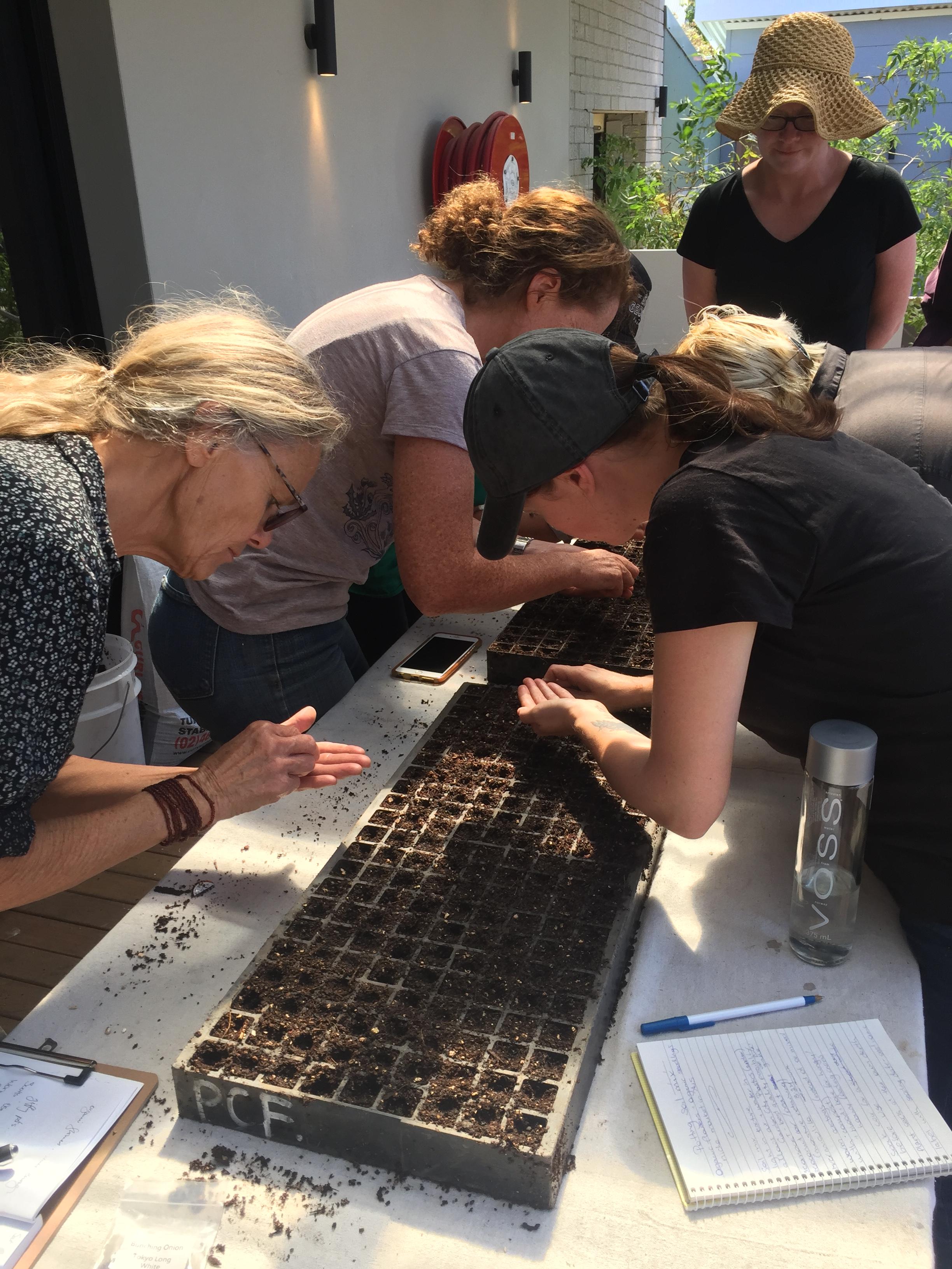 OMG – prac – seeding