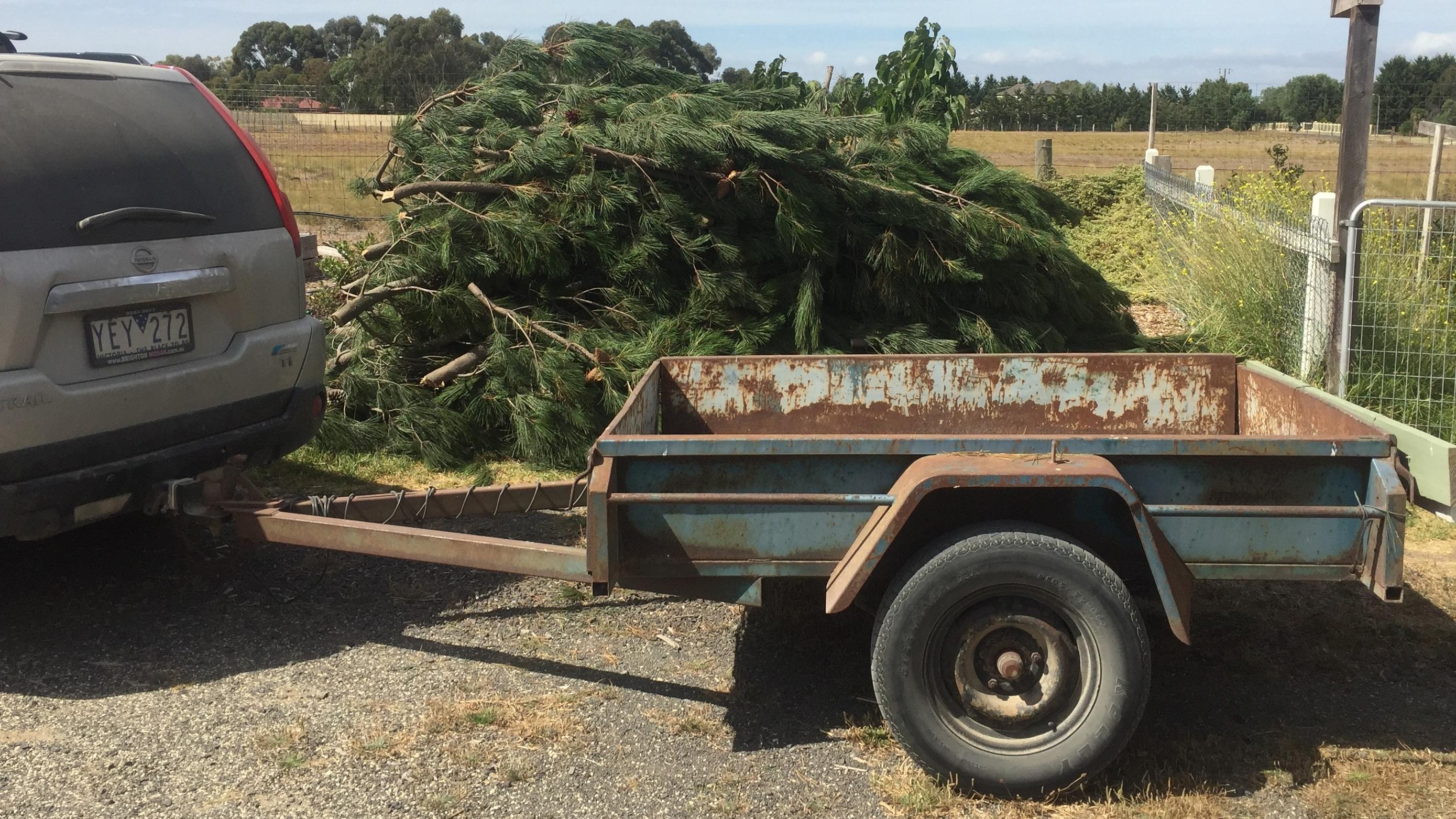 Pine – load