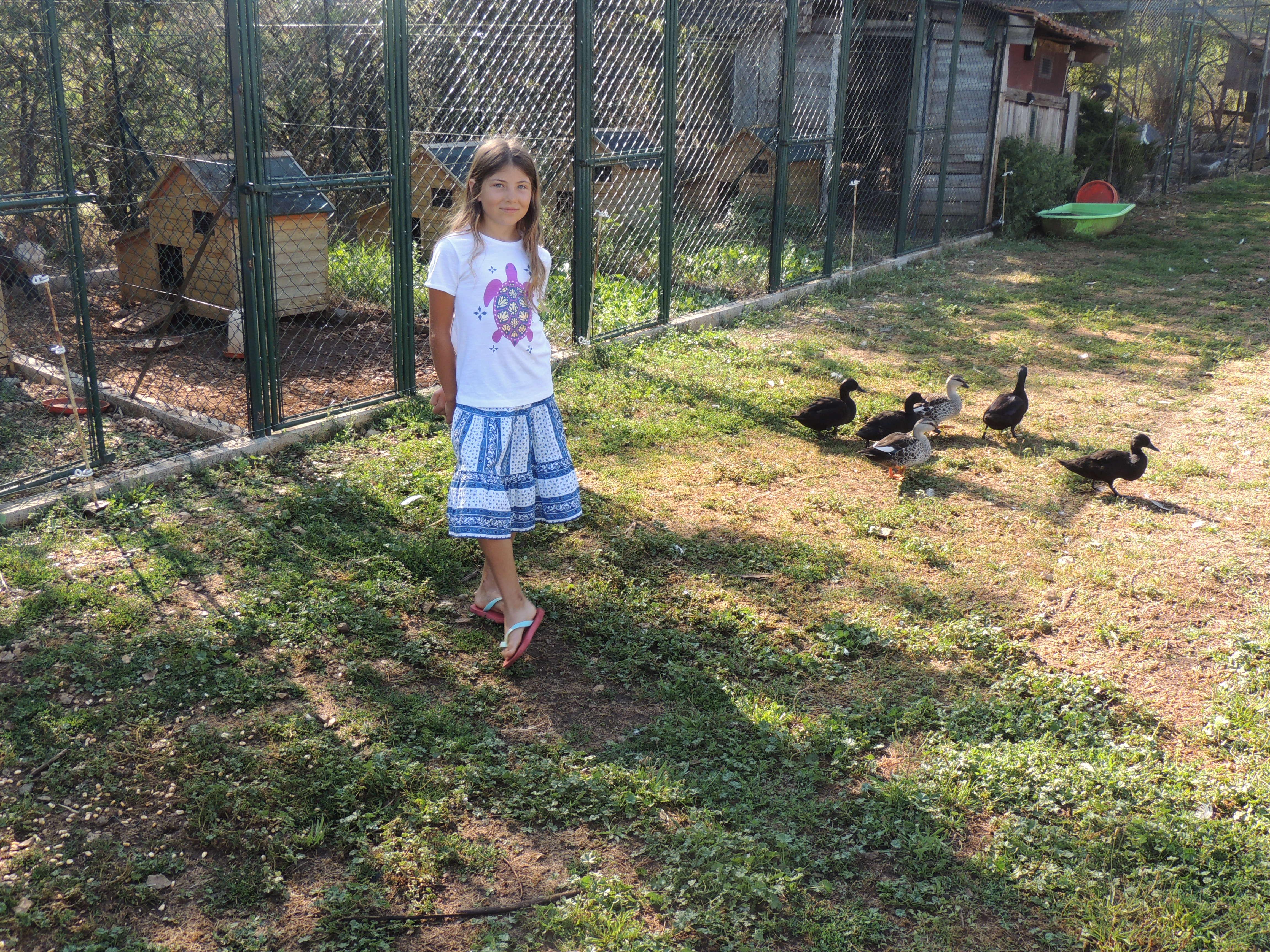 LF – Micaela and ducks