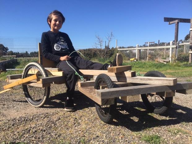 Reap - cart