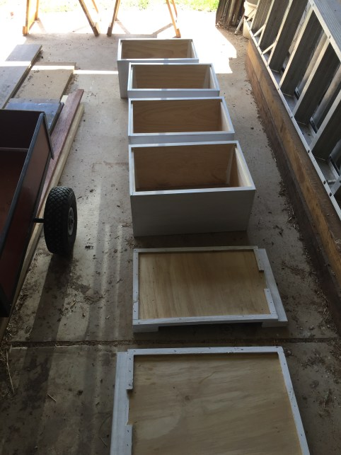Bees - paint assembly line