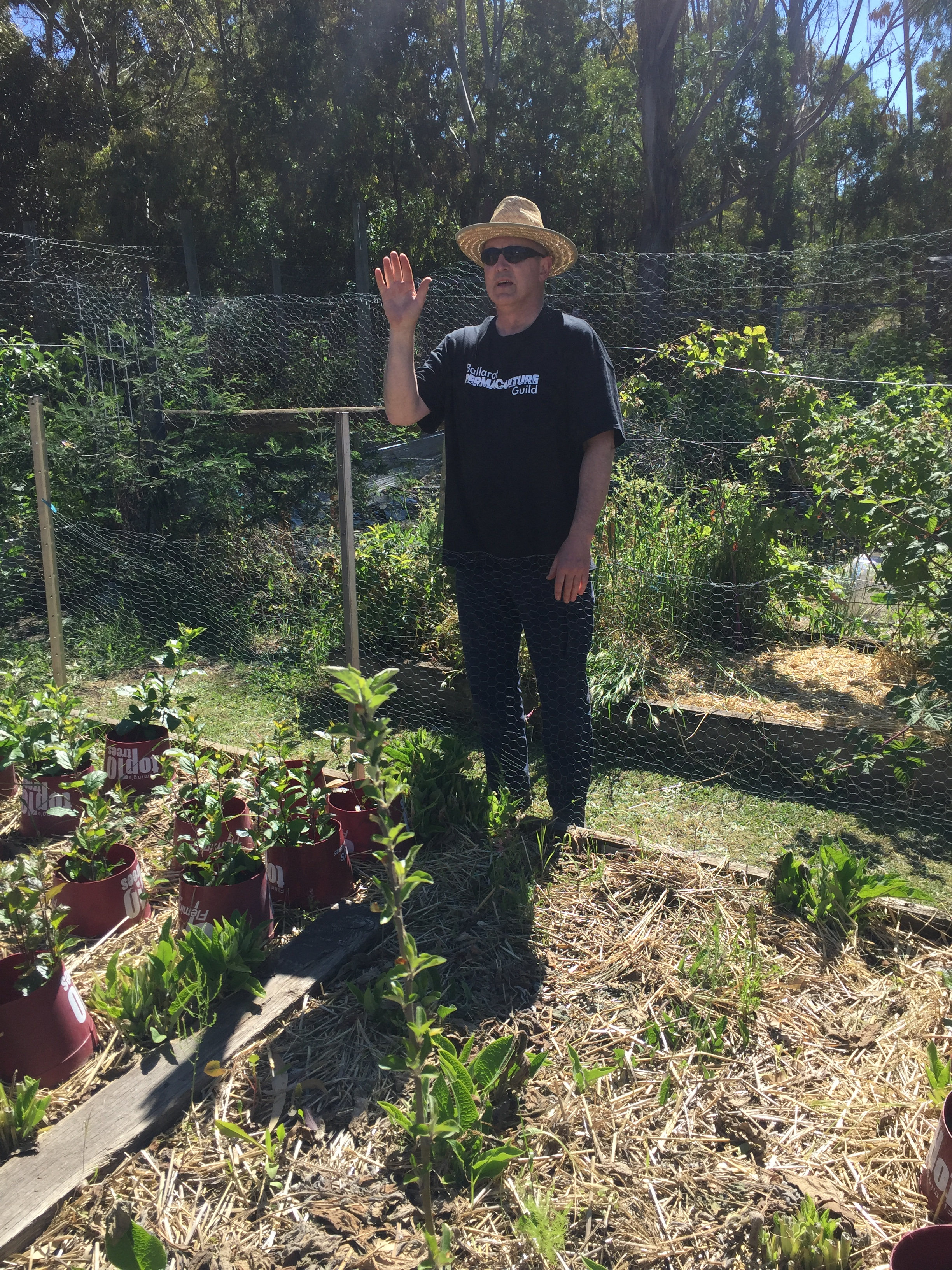 CN – Steve and apple rootstock