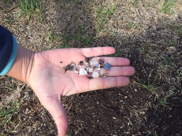 Compost – glass on lawn