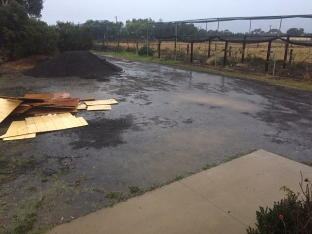 Rain - driveway