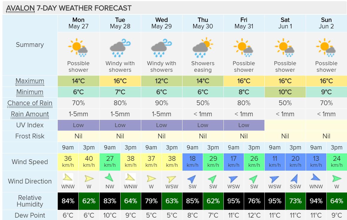 Winter – this week