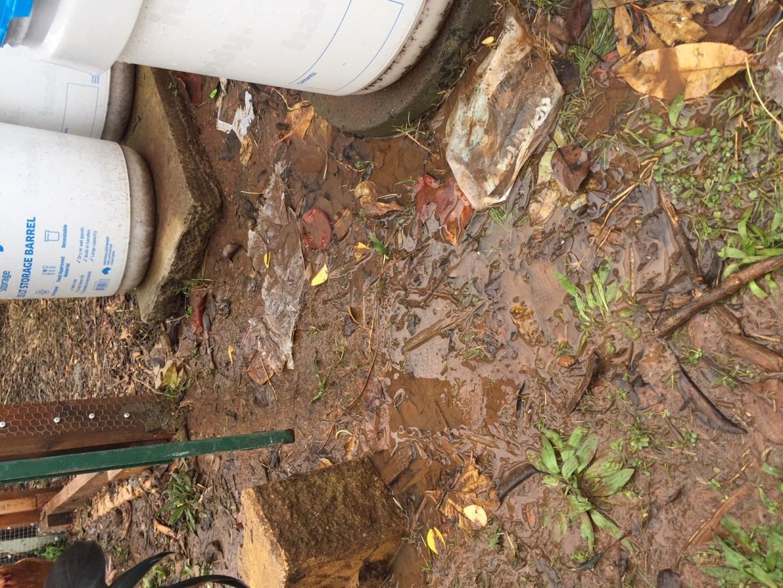 Pour – wet feeding area