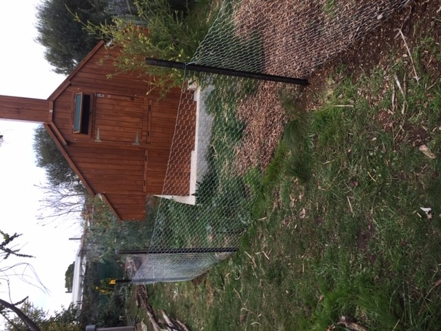 Chookproof- rooster fence 3