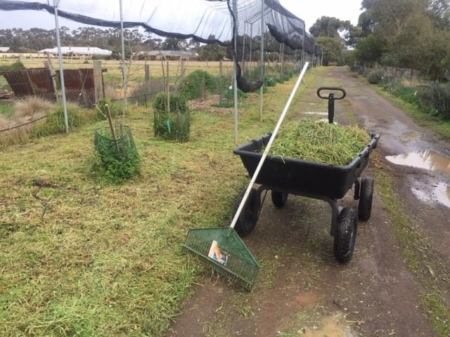 Driveway 0 – compost fodder