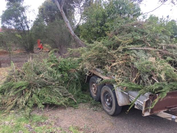 NB1 - mulch load