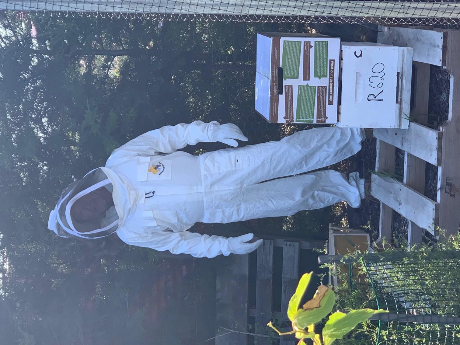 Bees – box transfer 1