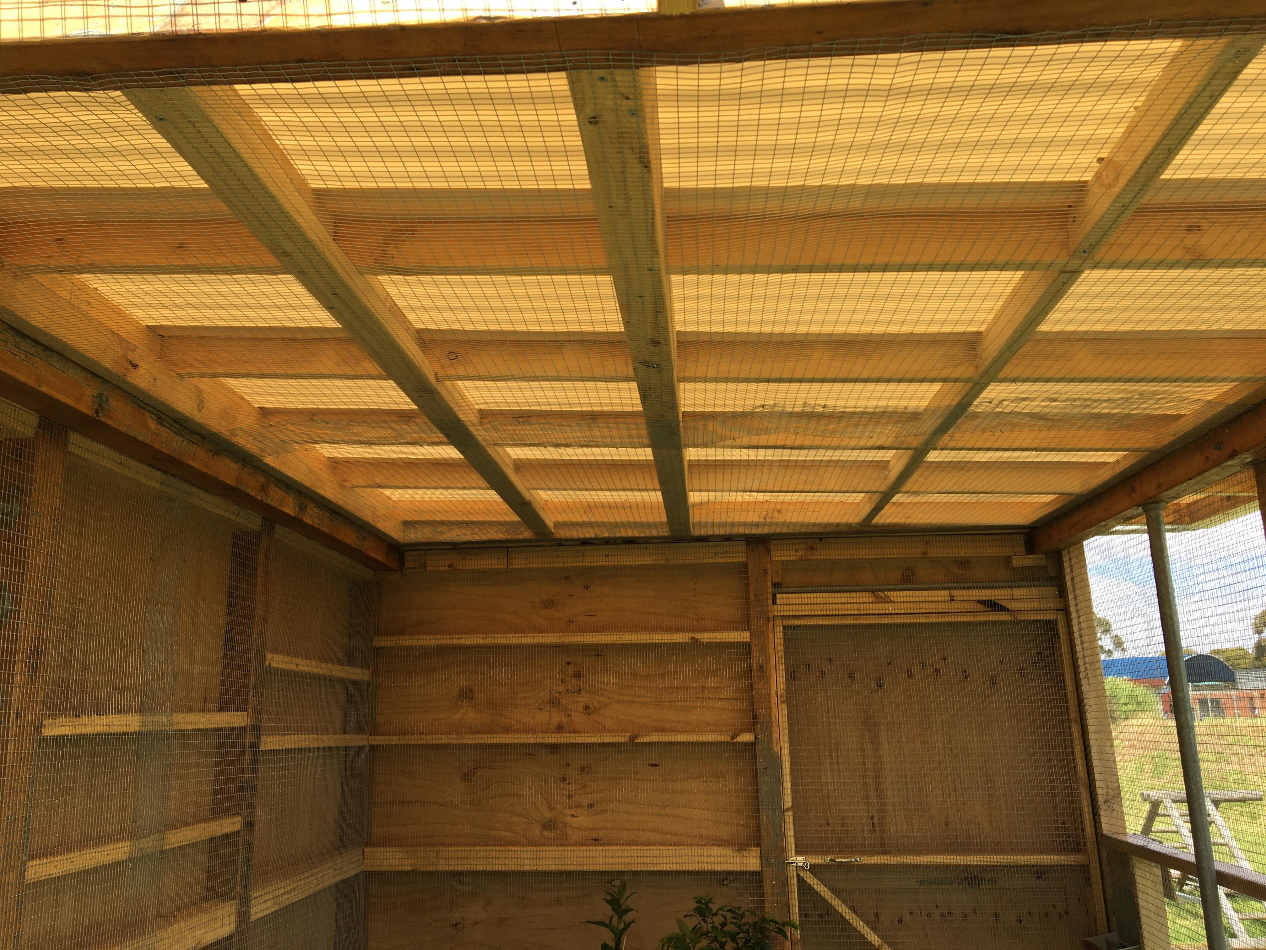 p3 – inside mesh