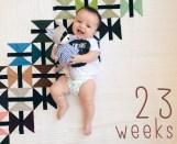 23 weeks old!